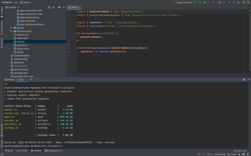 ng build command screenshot of IDE